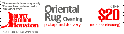 Area rug cleaning oriental rug